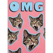 Avanti Press OMG Cat Pop Up Stand Out Funny Birthday Card