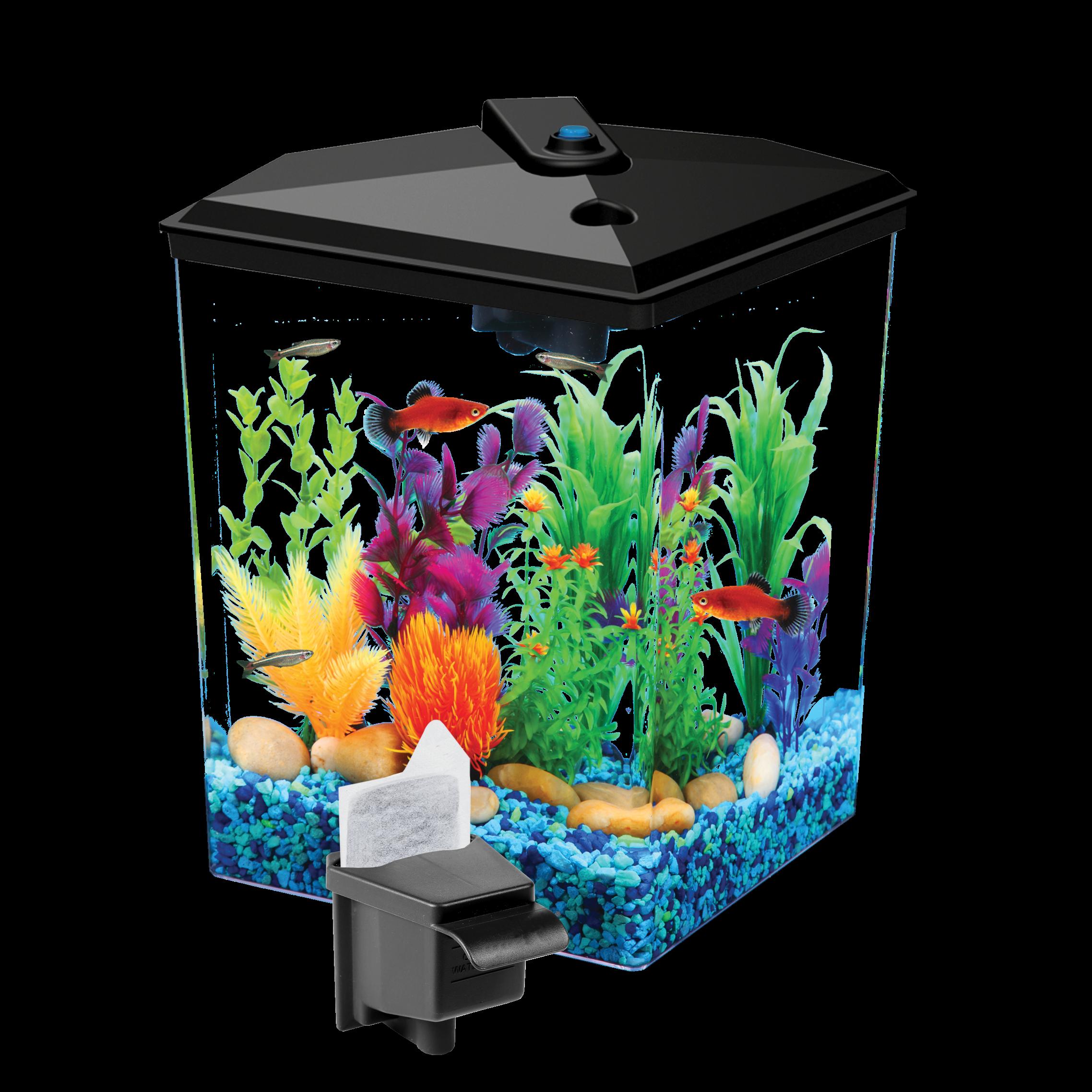 Aqua Culture 1-Gallon Aquarium Starter Kit with LED
