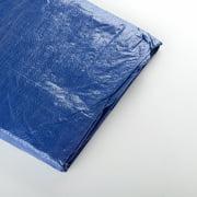 10 Foot X 10 Foot Blue Tarp Tarpaulin Waterproof All Purpose Canopy Cover