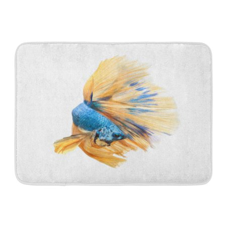 GODPOK Aquarium Blue Aggressive Betta Fish Siamese Fighting Splendens Halfmoon White Colorful Animal Aquatic Rug Doormat Bath Mat 23.6x15.7 inch ()