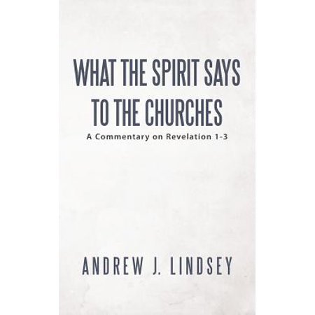 What the Spirit Says to the Churches : A Commentary on Revelation (Revelation The Spirit Speaks To The Churches)