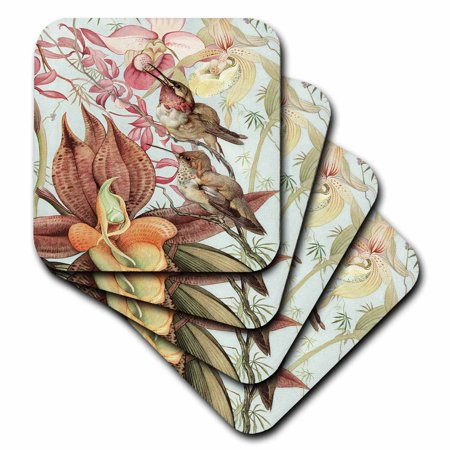 Hummingbird Coaster - 3dRose Catasetum and Cypridediums by Edward J. Detmold Orchid and Hummingbirds, Soft Coasters, set of 4