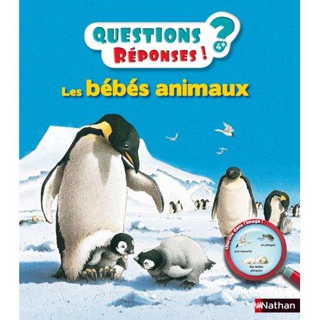 Les bébés animaux - Questions/Réponses - doc dès 5 ans - (Best Way To Learn Aws)