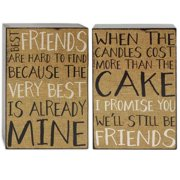 Blossom Bucket 2 Piece Friends Box Sign Wall Decor Set