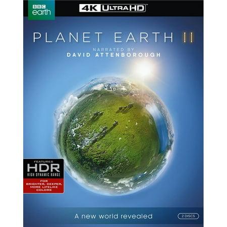 Planet Earth Ii  4K Ultra Hd