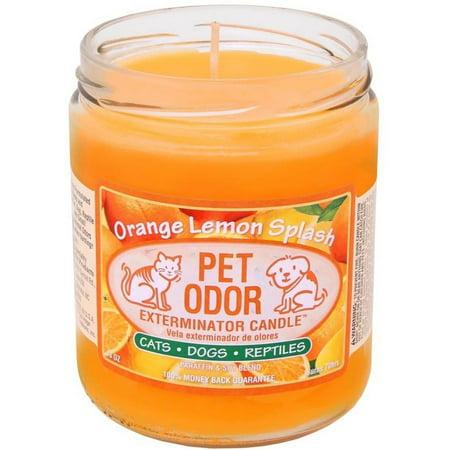 Pet Odor Exterminator Candle - Orange Lemon Splash Jar (13 oz)