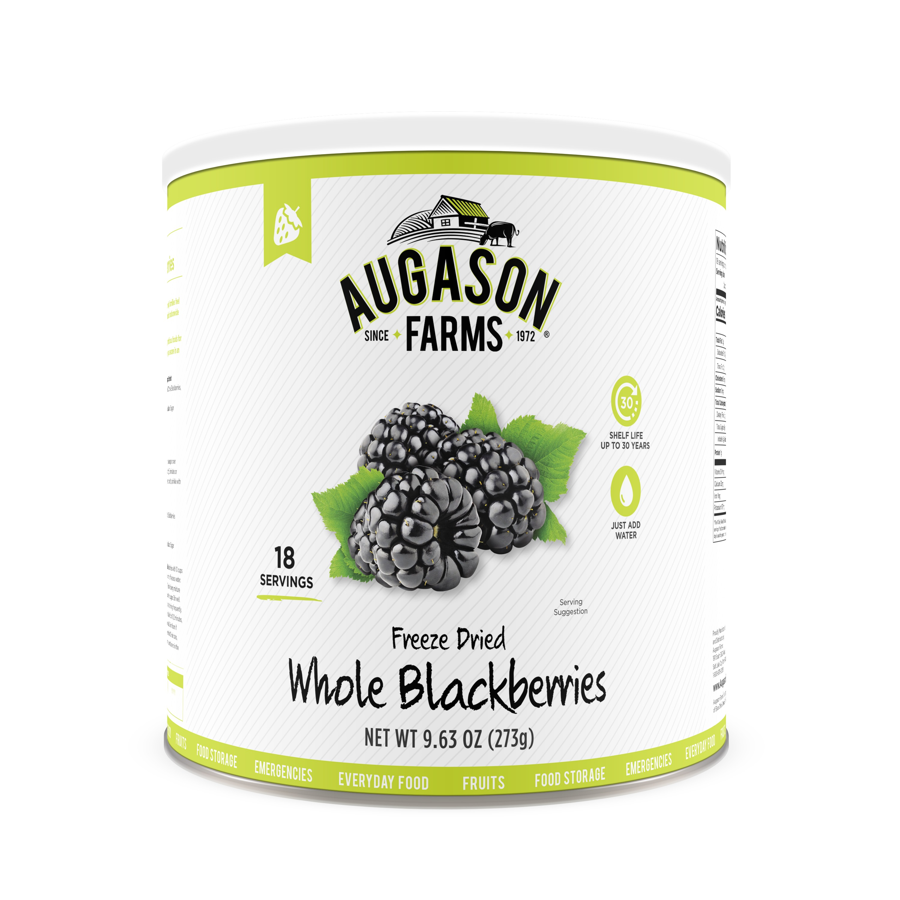 Augason Farms Freeze Dried Whole Blackberries 9. 63 oz No. 10 Can