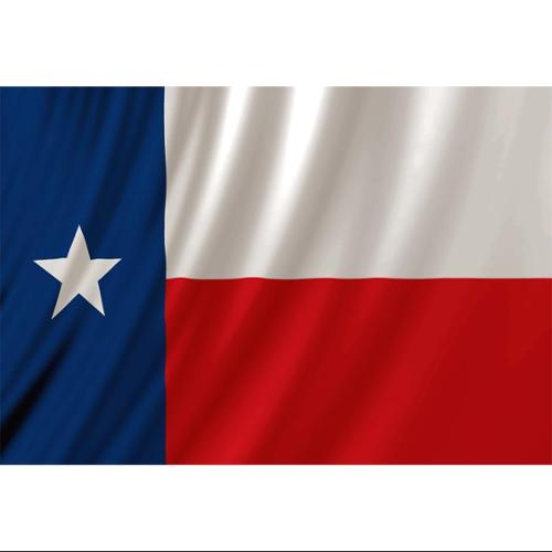 Texas Flag Fabric Shower Curtain Lone Star Texan
