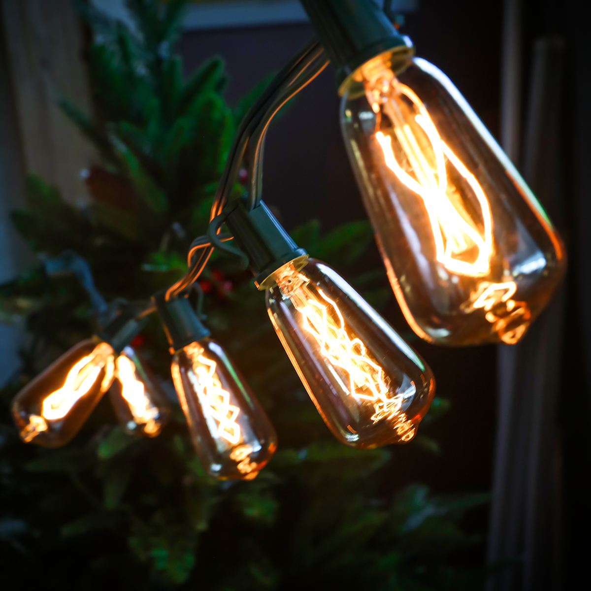 Christmas Festival Indoor & Outdoor Silvering ST40 Glass Bulb String Light