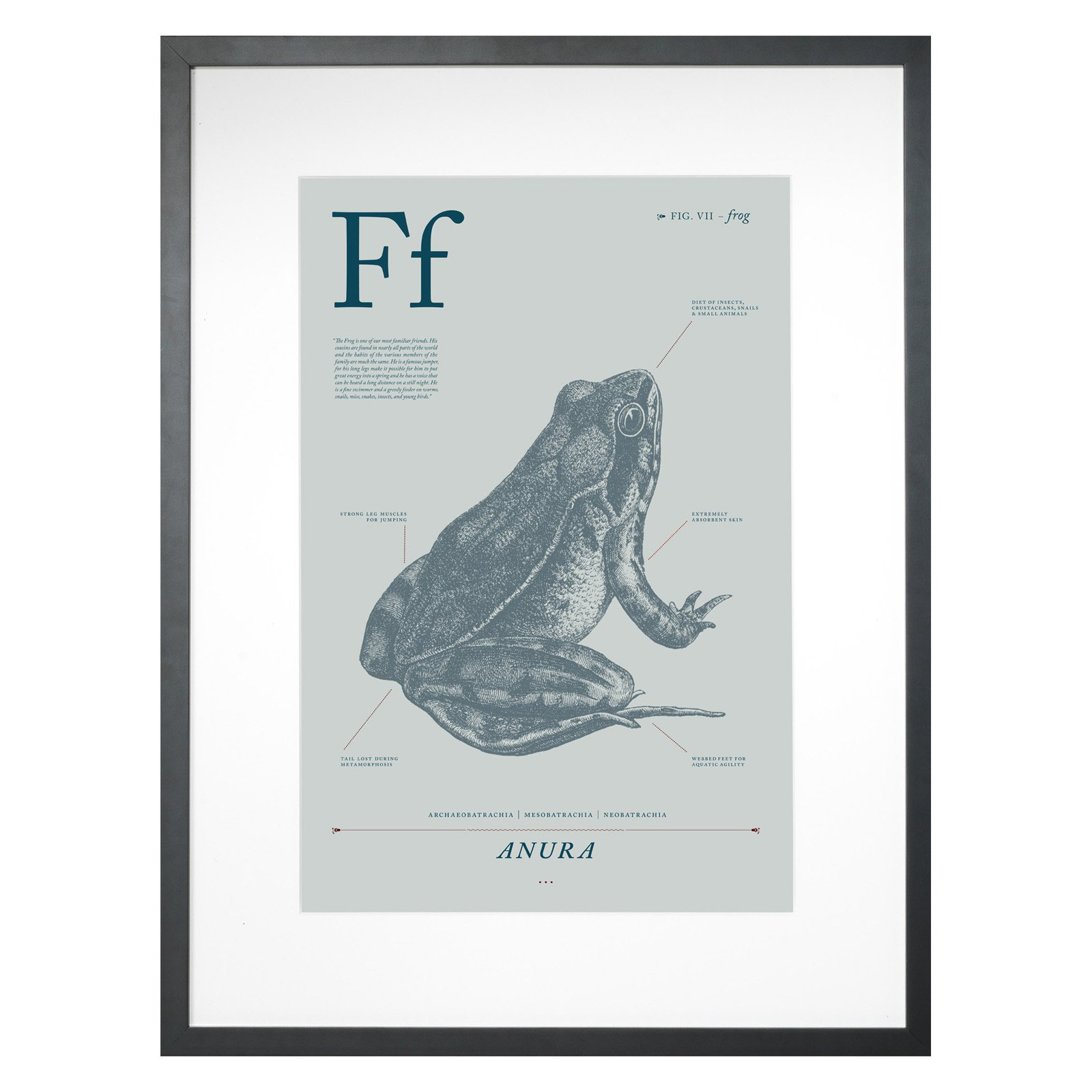 Frog Framed Wall Decor - 18W x 24H in.
