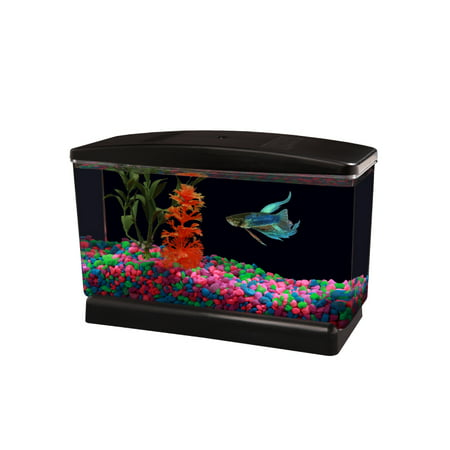 Aqua Culture Betta View Half Gallon Fish Tank with Base