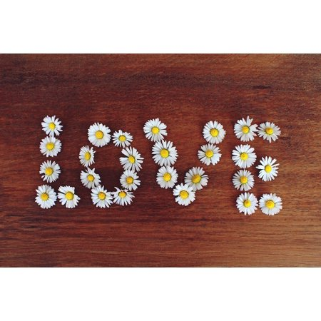 LAMINATED POSTER Relationship Daisy Valentine's Day Love Word Text Poster Print 24 x 36 (Daisy Love)