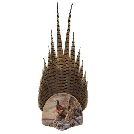 - Walnut Hollow Country Pheasant Tail Display Kit with Color Image