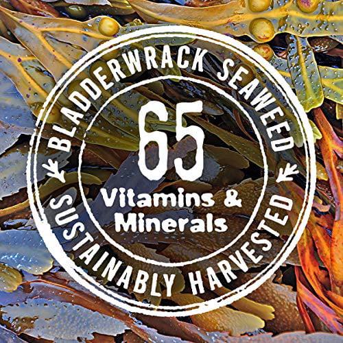 The Seaweed Bath Co Volumizing Shampoo Lavender Natural Organic Bladderwrack Seaweed Vegan And Paraben Free 12oz Walmart Com Walmart Com