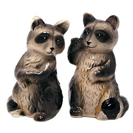 Salt & Pepper Shaker Set -