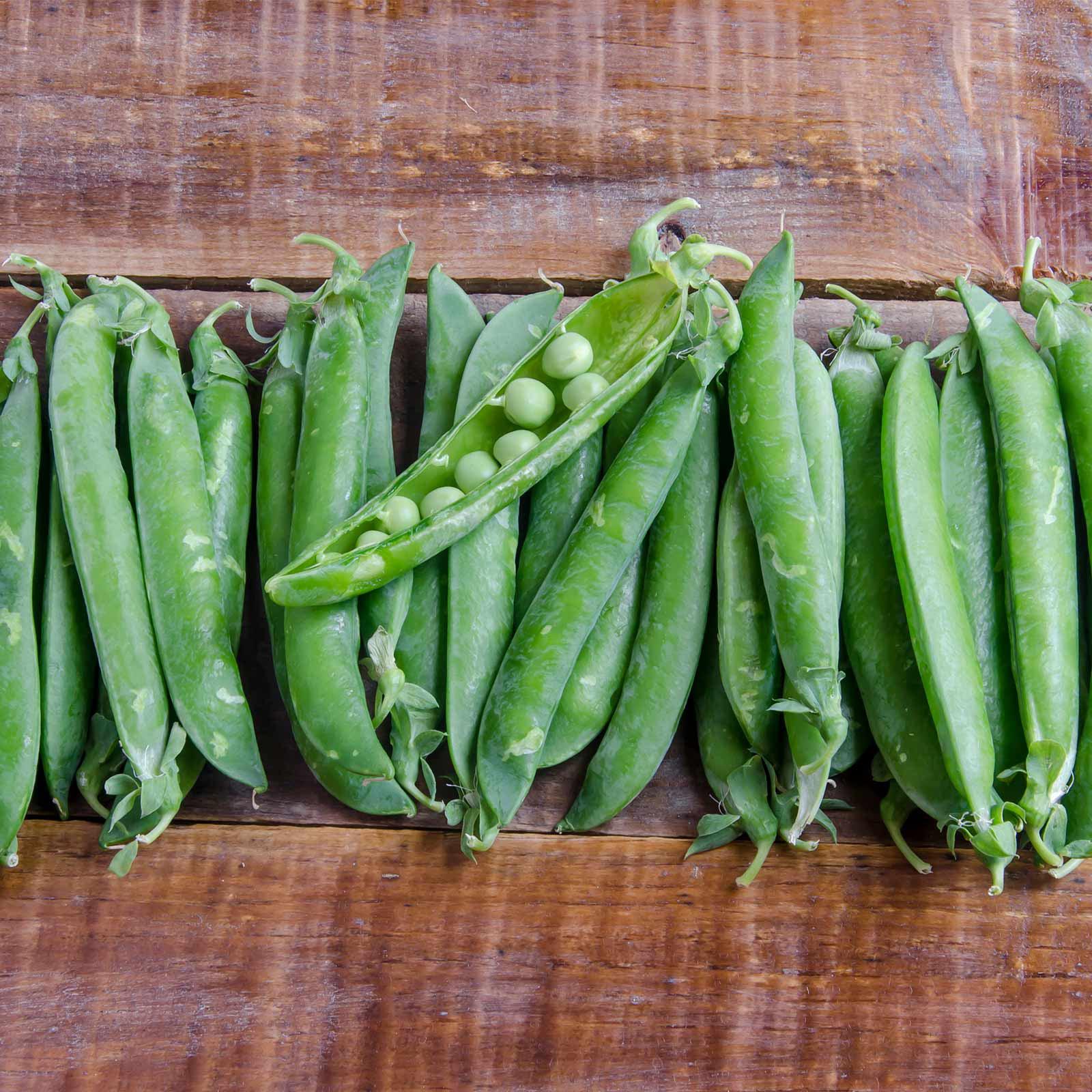 Green Arrow Pea Garden Seeds - 5 Lb - Non-GMO, Heirloom Vegetable Gardening & Micro Pea Shoots Seeds