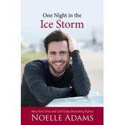 One Night in the Ice Storm - eBook
