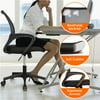 Height Adjustable Office Chair Ergonomic Mesh Chair 360-Degree Rolling Computer Chair, Black