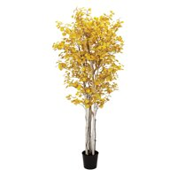 Sullivans Autumn Silk Aspen Tree