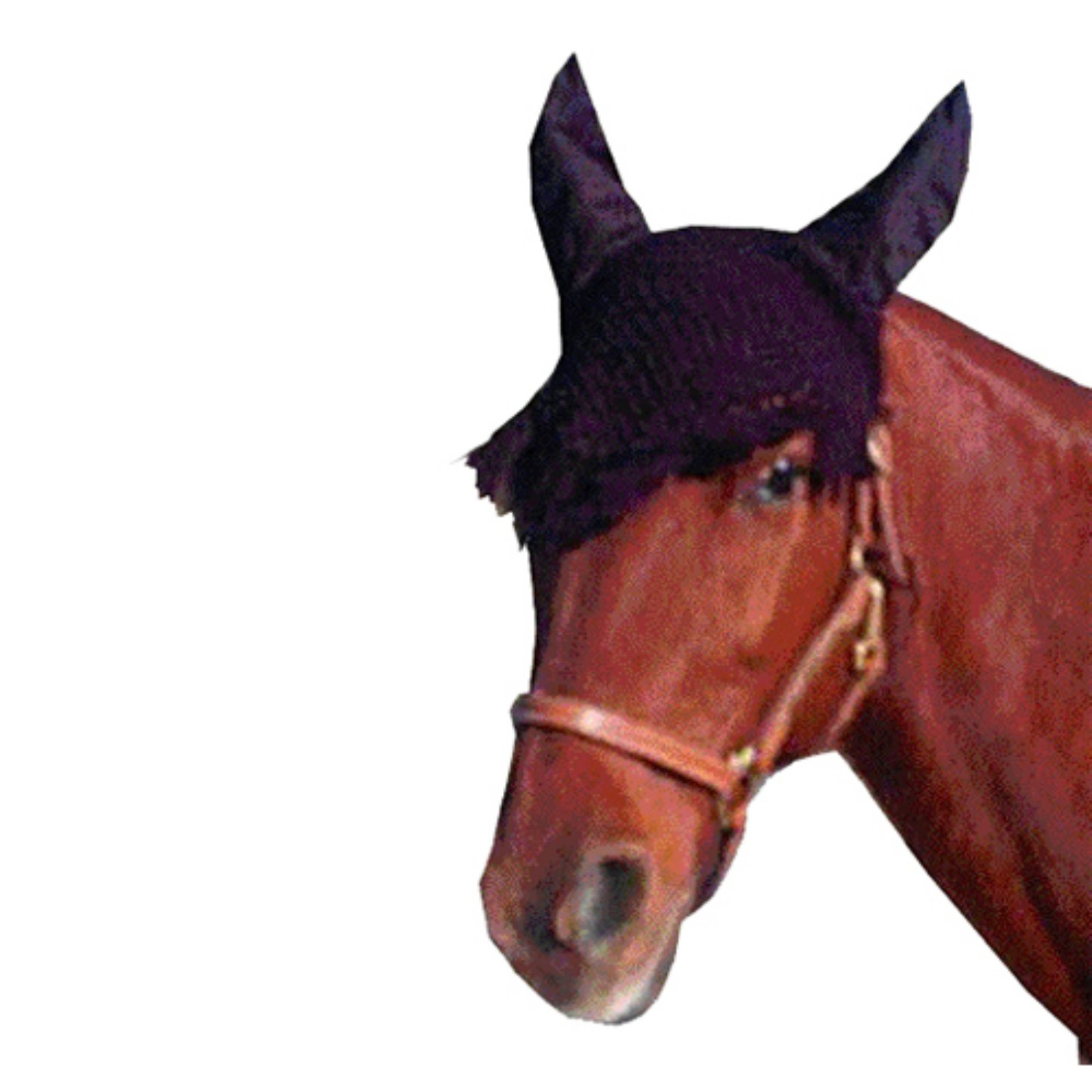 Imported Horse & Supply Fly Veil
