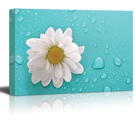 wall26 - White Daisy Flower on an Aqua Background with Rain Drops - Canvas Art Home Decor - 16x24 inches