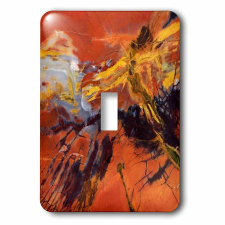 3dRose USA, Arizona. Abstract of petrified wood - US02 BJA0266 - Jaynes Gallery, Single Toggle Switch