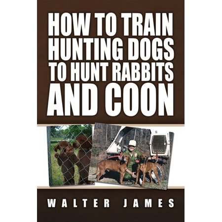 How to Train Hunting Dogs to Hunt Rabbits and Coon - (Best Dog For Hunting Rabbits)