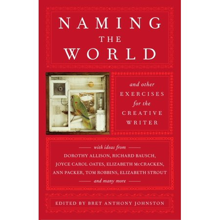Naming the World : And Other Exercises for the Creative