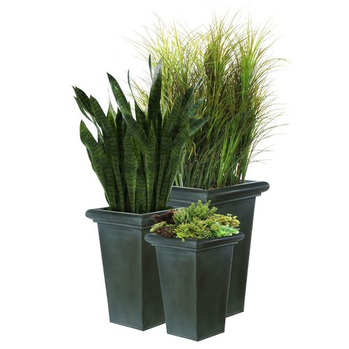 Dalmarko Designs Grasses Sansevieria And Succulent Floor Plant In