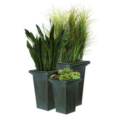 Dalmarko Designs Grasses Sansevieria And Succulent Floor Plant In