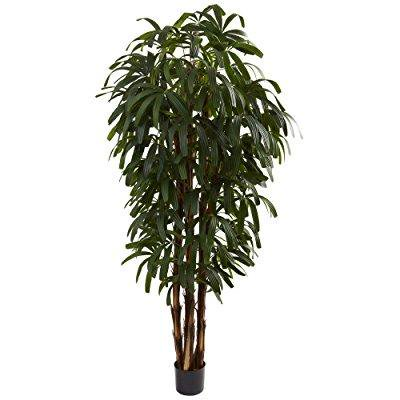 nearly natural 5404 raphis palm tree, 6-feet, - 5404 Natural