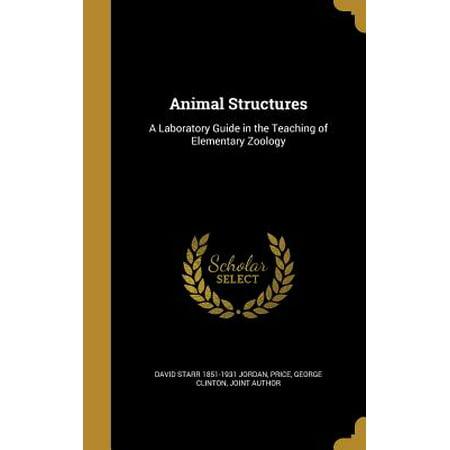 Animal Structures : A Laboratory Guide in the Teaching of Elementary (Lab Pe Aati Hai Dua Banke Tamanna Meri)
