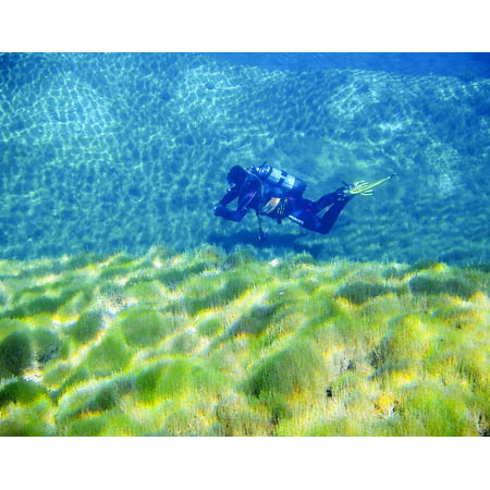 Canvas Print Divers Diving Underwater Float Water Scuba Divers Stretched Canvas 10 x 14 for $<!---->