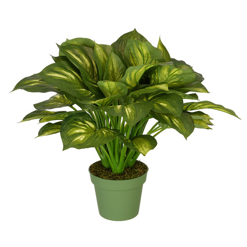 House of Silk Flowers Inc. Hosta Floor Plant in Pot