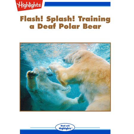 Flash! Splash! Training a Deaf Polar Bear - (Free Flash Splash)