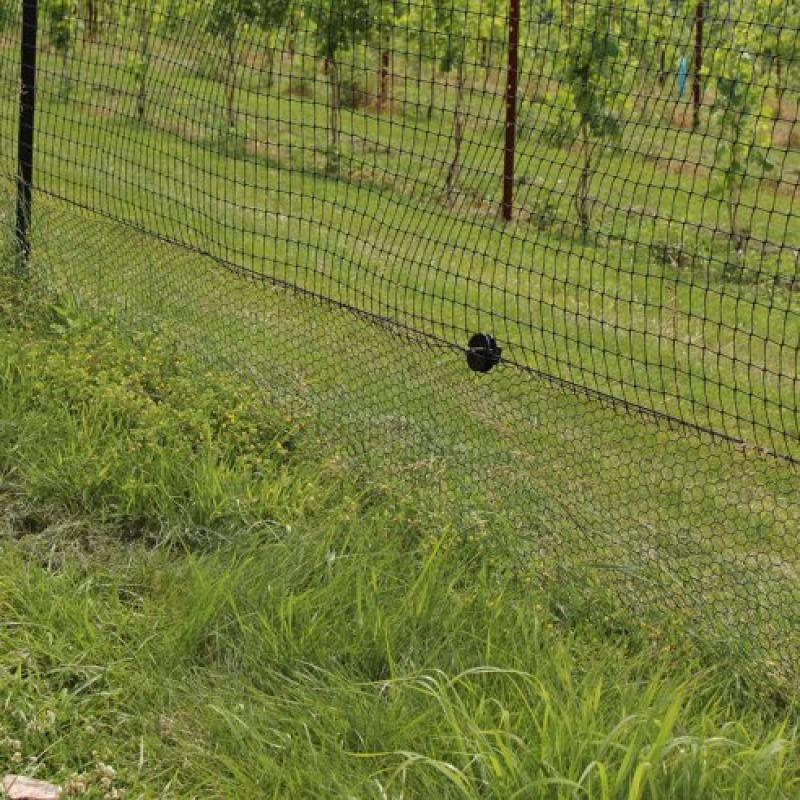 Deerbusters Fence: Black Vinyl Coated Galvanized Wire Ani...