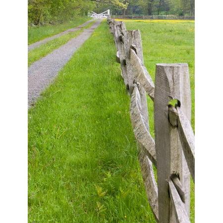 Split Rail Fencing (Split Rail Fence and Farm Road, Essex County, Ipswich, Massachusetts, USA Print Wall Art By Jerry & Marcy)