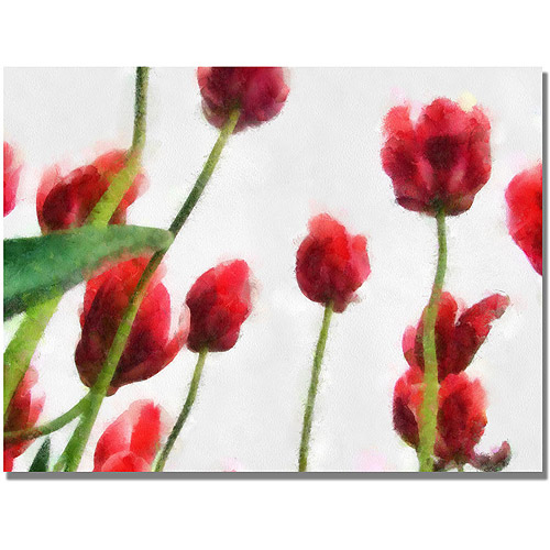 "Trademark Fine Art ""Red Tulips from Bottom Up II"" Canvas Art by Michelle Calkins"