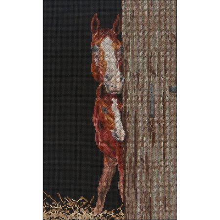 "Thea Gouverneur Counted Cross Stitch Kit 6""X10""-Horse & Foal On Aida (18 Count) - image 1 de 1"