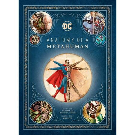 DC Comics: Anatomy of a - Hottest Comic Book Females
