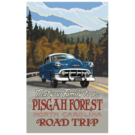 Pisgah Forest North Carolina Road Trip Hills Travel Art Print Poster by Paul A. Lanquist (12