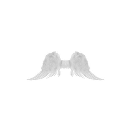 Costumes Angel Wings (Child 17