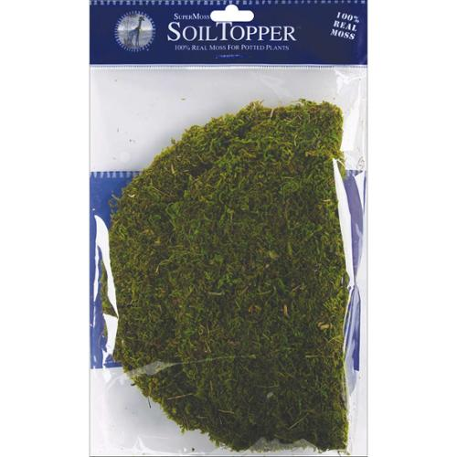 "Moss Pot Toppers 10"" 3/Pkg-Green"