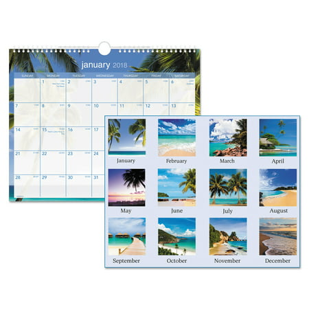 AT-A-GLANCE Tropical Escape Wall Calendar, 15 x 12, 2018