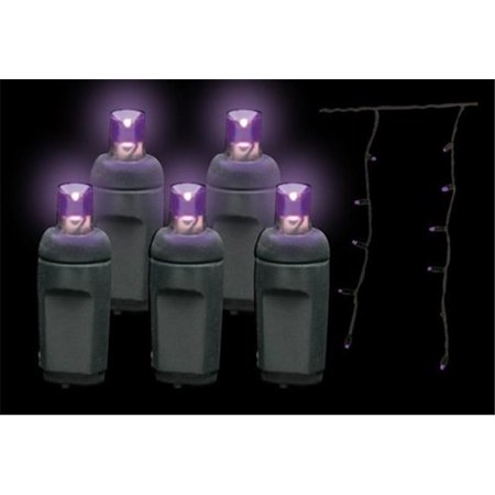 Reinders LEDICE-P-B Premium Grade LED Icicle Lights 105 Purple Frost Holiday Lights String with Black Wire