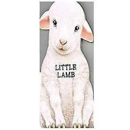 Little Lamb - image 1 de 1