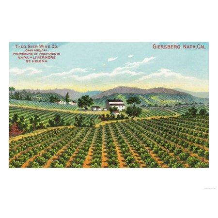 View of the Giersberg Vineyard - Napa, CA Print Wall Art By Lantern Press](Halloween City Napa Ca)