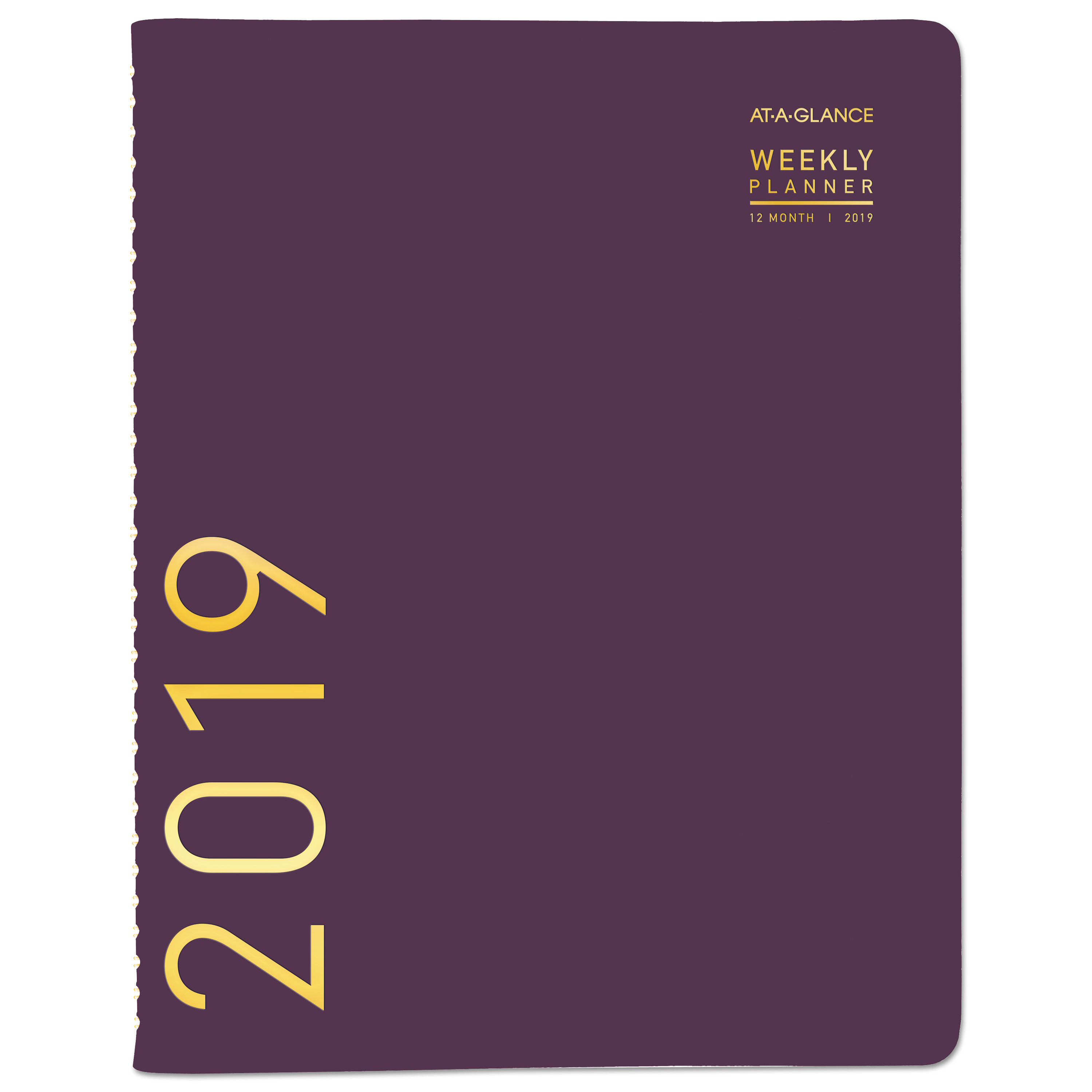 AT-A-GLANCE Contemporary Weekly Monthly Appointment Book, 8 1 4 x 10 7 8, Purple, 2019 -AAG70940X59 by AT-A-GLANCE