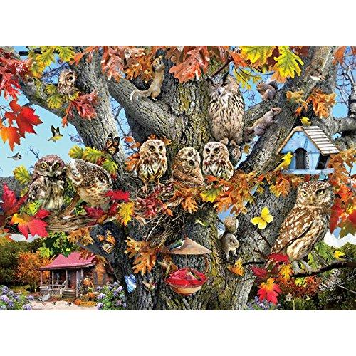 SunsOut Owl Family Reunion 1000 Piece Jigsaw Puzzle 34979