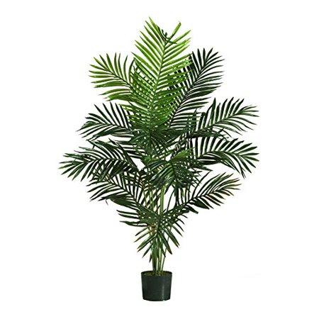Paradise Palm Silk Tree - 5 Feet Paradise Silk Palm Tree